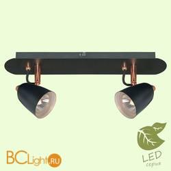 Потолочный светильник Lussole Loft Cauldron GRLSP-9852