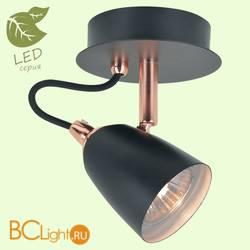 Потолочный светильник Lussole Loft Cauldron GRLSP-9851