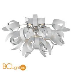 Потолочный светильник Lussole Loft Curl LSA-5927-09