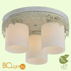 Потолочный светильник Lussole Loft Desert GRLSP-0049