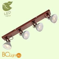 Потолочный светильник Lussole Loft Diana GRLSP-9829