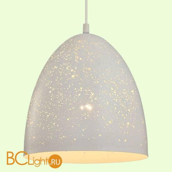 Подвесной светильник Lussole Loft Ecodome GRLSP-9891