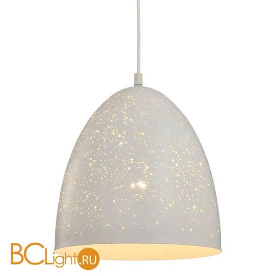 Подвесной светильник Lussole Loft Ecodome LSP-9891