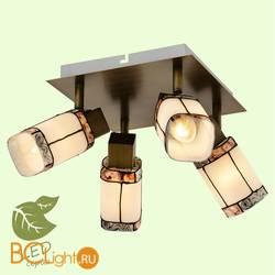 Потолочный светильник Lussole Loft Erta GRLSP-0221