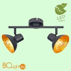 Потолочный светильник Lussole Loft Louisville GRLSP-9974