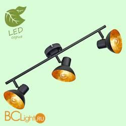 Потолочный светильник Lussole Loft Louisville GRLSP-9975