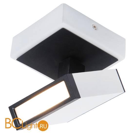 Потолочный светильник Lussole Loft Misato LSP-8012