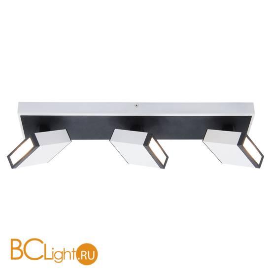 Потолочный светильник Lussole Loft Misato LSP-8013