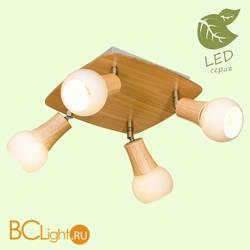 Потолочный светильник Lussole Loft Natural GRLSP-0121