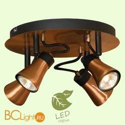 Потолочный светильник Lussole Loft Projector GRLSL-6801-04