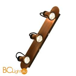 Спот (точечный светильник) Lussole Projector LSL-6801-03