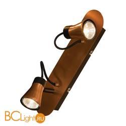 Спот (точечный светильник) Lussole Projector LSL-6801-02