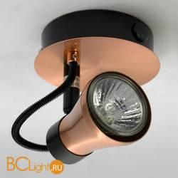 Спот (точечный светильник) Lussole Projector LSL-6801-01