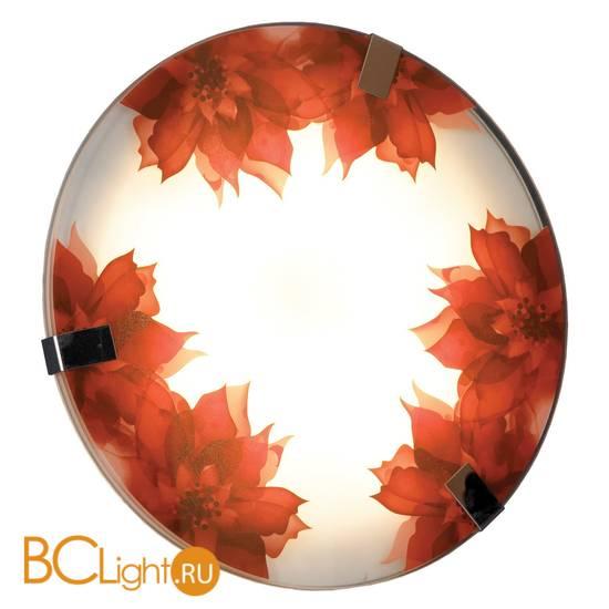 Настенный светильник Lussole Red LSN-5252-01