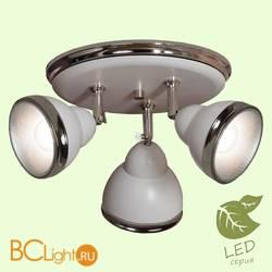 Потолочный светильник Lussole Loft Sara GRLSN-6211-03