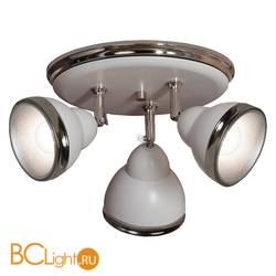 Спот (точечный светильник) Lussole Loft Sara LSN-6211-03