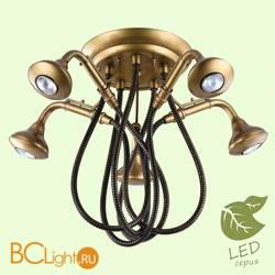 Потолочная люстра Lussole Loft Shower GRLSP-9755