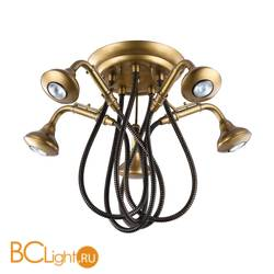 Потолочная люстра Lussole Shower LSP-9755