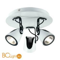Светодиодный точечный светильник Lussole Shuttle LSN-4101-03