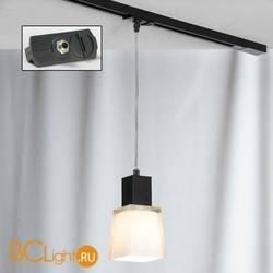 Подвесной трековый светильник Lussole Loft Track Lights LSC-2506-01-TAB