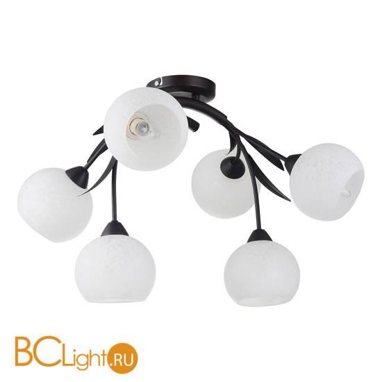 Потолочная люстра Lussole Bagheria GRLSF-6283-06