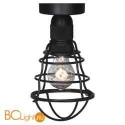 Потолочный светильник Lussole Baldwin LSP-9875c