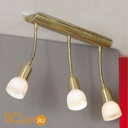 Спот (точечный светильник) Lussole Barete LSL-7790-03