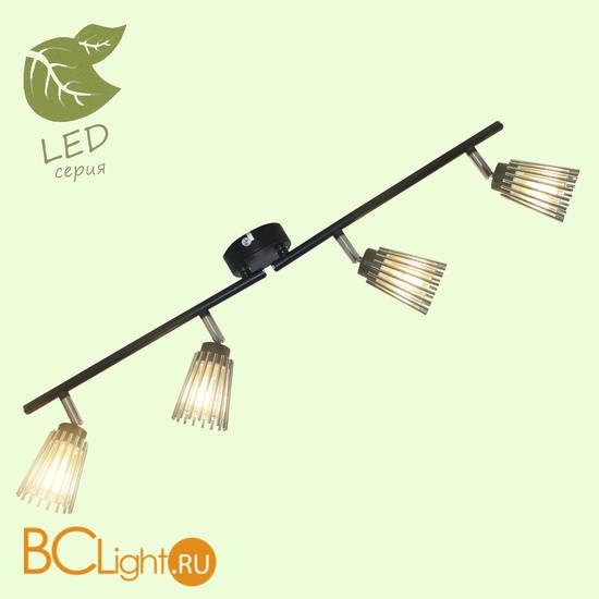Потолочный светильник Lussole Berta GRLSP-9901