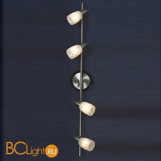 Спот (точечный светильник) Lussole Cevedale LSQ-6909-04