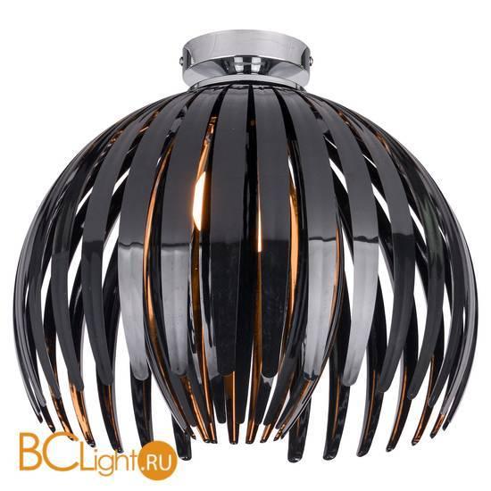 Потолочный светильник Lussole Jalousie LSP-9536