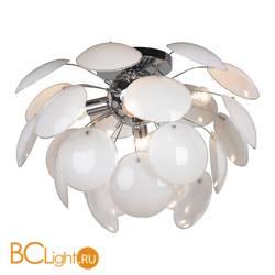 Потолочный светильник Lussole Mattina LSQ-4303-04