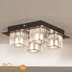 Потолочный светильник Lussole Notte Di Luna LSF-1307-04