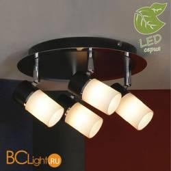 Потолочный светильник Lussole Sale GRLSQ-6101-04