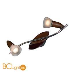 Потолочный светильник Lussole Sale GRLSQ-6401-02