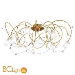 Потолочная люстра Masca Kikka 1850/9PL Oro brunito / Glass 559
