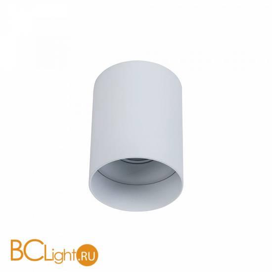 Потолочный светильник Maytoni Alfa C014CL-01W