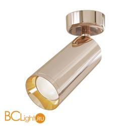 Потолочный светильник Maytoni Focus C017CW-01RG