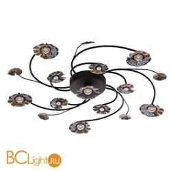 Потолочный светильник MW-Light Адриатика 280011611