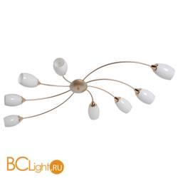 Потолочная люстра MW-Light Олимпия 638016508