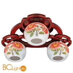 Потолочная люстра N-Light Color 6143-3B