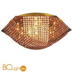 Потолочный светильник N-Light Eye 06 2670 0333 16