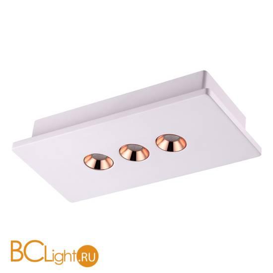 Потолочный светильник Novotech Caro 357940