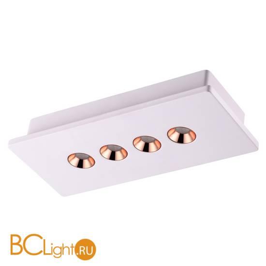 Потолочный светильник Novotech Caro 357941