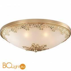 Настенно-потолочный светильник Odeon Light Alesia 2676/7C