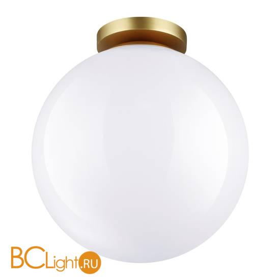 Уличный потолочный светильник Odeon Light Bosco 4249/1C
