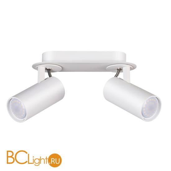 Потолочный светильник Odeon Light Corse 3873/2C