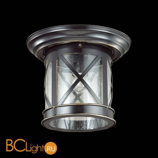 Уличный потолочный светильник Odeon Light Sation 4045/1C
