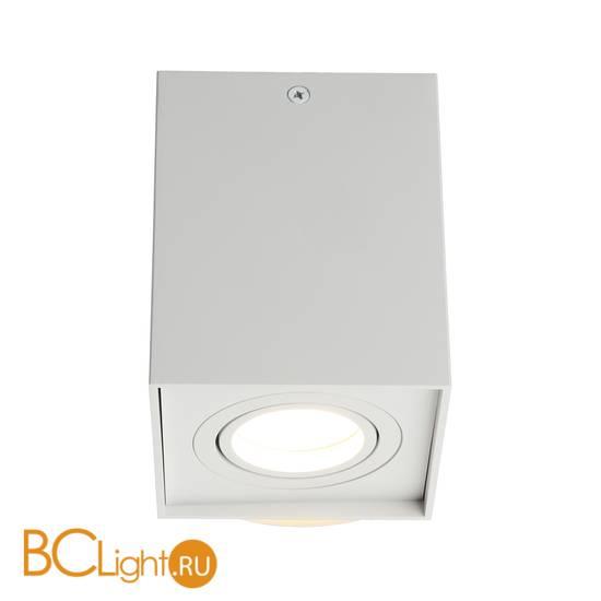 Потолочный светильник Omnilux Feletto OML-101109-01