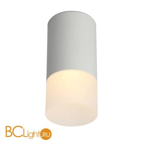Потолочный светильник Omnilux Lucido OML-100609-01