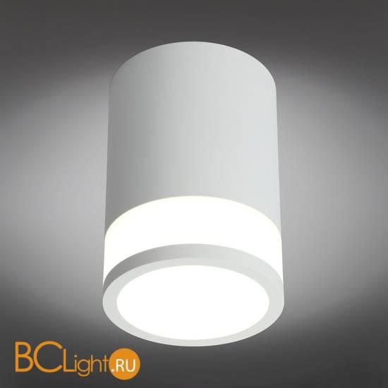 Потолочный светильник Omnilux Orolli OML-101509-12